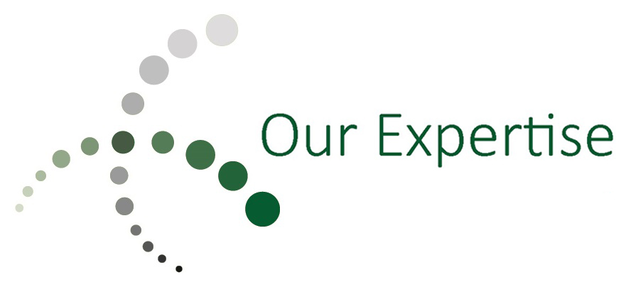 1-Our-Expertise